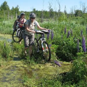 Усад - Ногинск на велосипеде